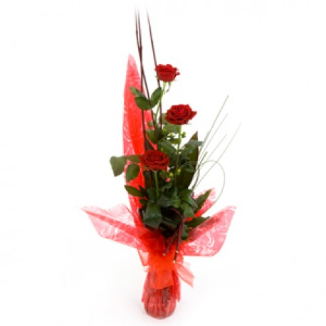Three Red Roses Gift Wrapped